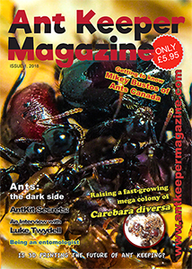 Electronic Subscription (USD) Issues 1-4