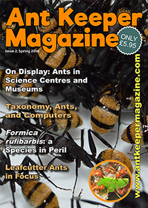 Print Subscription (non-UK) Issues 2-5