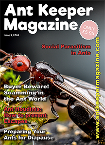 Print Subscription (non-UK) Issues 3-6